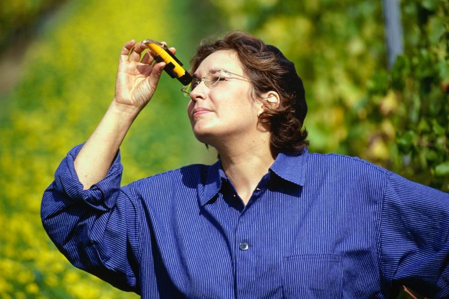 Refraktometerillä tarkistetaan viinin laatu