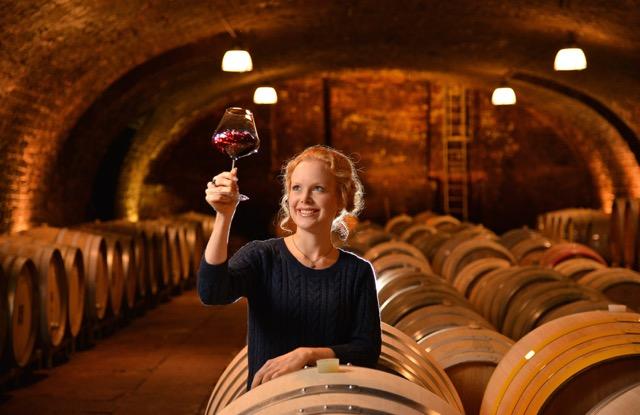 viinikellarissa